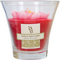 WATER LILY SCENTED Candles da Water Lily Scented